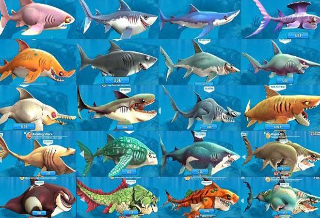 Game hungry shark có lối chơi vô cùng đơn giản